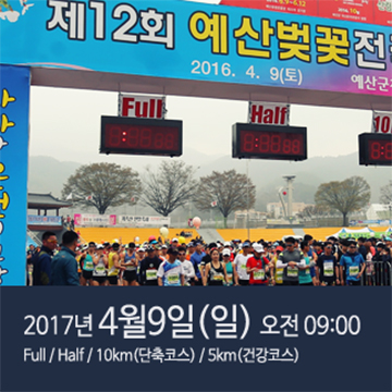 제13회 예산벚꽃전국마라톤